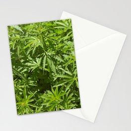 Cannabis Texture Marijuana Leaf Stationery Cards