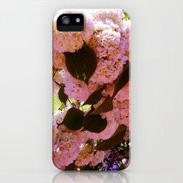 Pink Snowballs iPhone Case