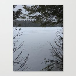 Winer Thought the Trees Canvas Print