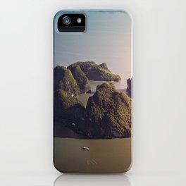 Sleeping Dragon iPhone Case