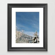 Cottonwood Canyon II Framed Art Print