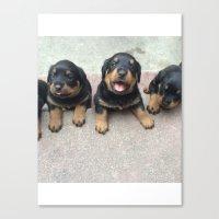 rottweiler Canvas Prints featuring rottweiler by Rottweilerland