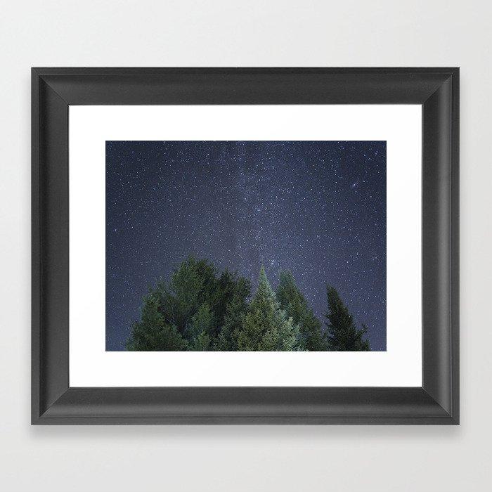 Pine trees with the northern michigan night sky Gerahmter Kunstdruck