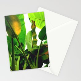p a l m s Stationery Cards