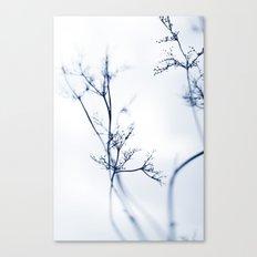 aeons Canvas Print