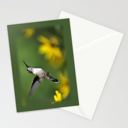 Hummingbird VIII Stationery Cards
