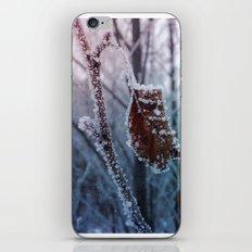 magic of winter iPhone & iPod Skin