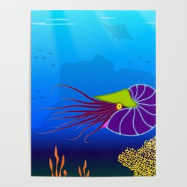 Paper Craft Nautilus Poster
