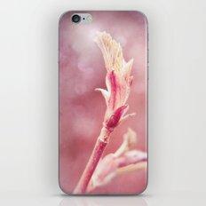 HOPE - BIRTH OF A LEAF iPhone & iPod Skin