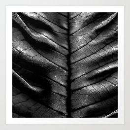Dragon Spine (Black Version) Art Print
