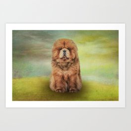 Drawing dog chow chow Art Print