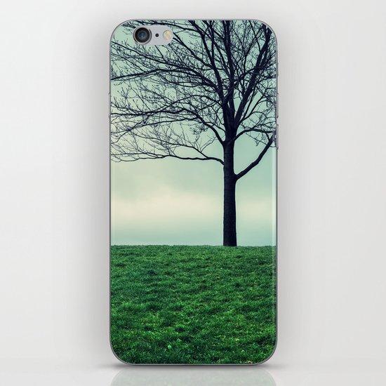 Park Simplicity iPhone & iPod Skin