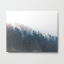 Misty Tillamook Woods Metal Print