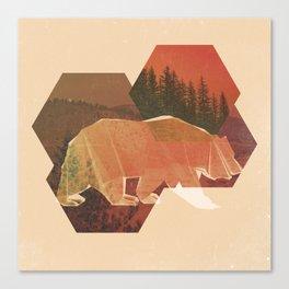 POLYBEAR Canvas Print