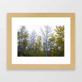 Lundy Canyon during the Fall Framed Art Print