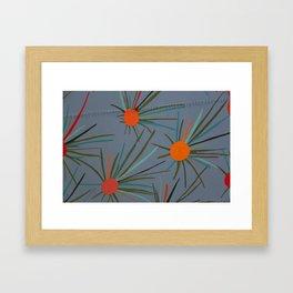 Espinas de México Framed Art Print