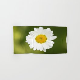 Beautiful Daisy Natural Green Background #decor #society6 #buyart Hand & Bath Towel