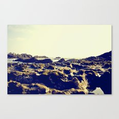 You Can Hear The Seagulls Canvas Print