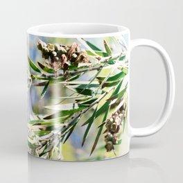 Beautiful Red Bottle Brush flower Coffee Mug