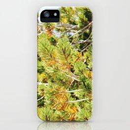 Needles iPhone Case