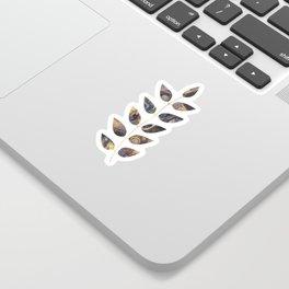 Branch Sticker