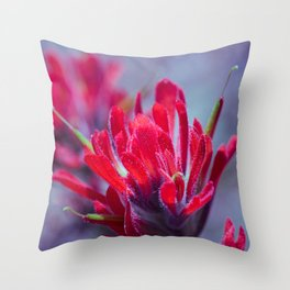 Indian Paintbrush Groovy Wildflower Throw Pillow