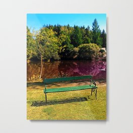 Bench at the pond Metal Print
