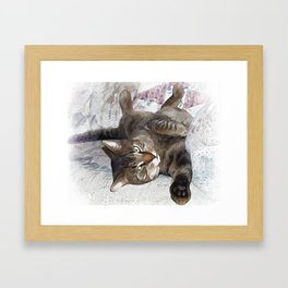 Mister Cat Framed Art Print