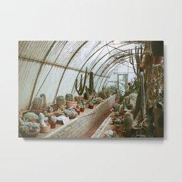Moorten Botanical Gardens Metal Print
