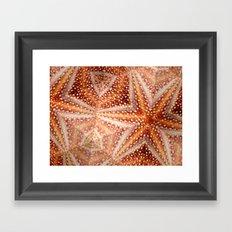 Urchin Mosaic Framed Art Print
