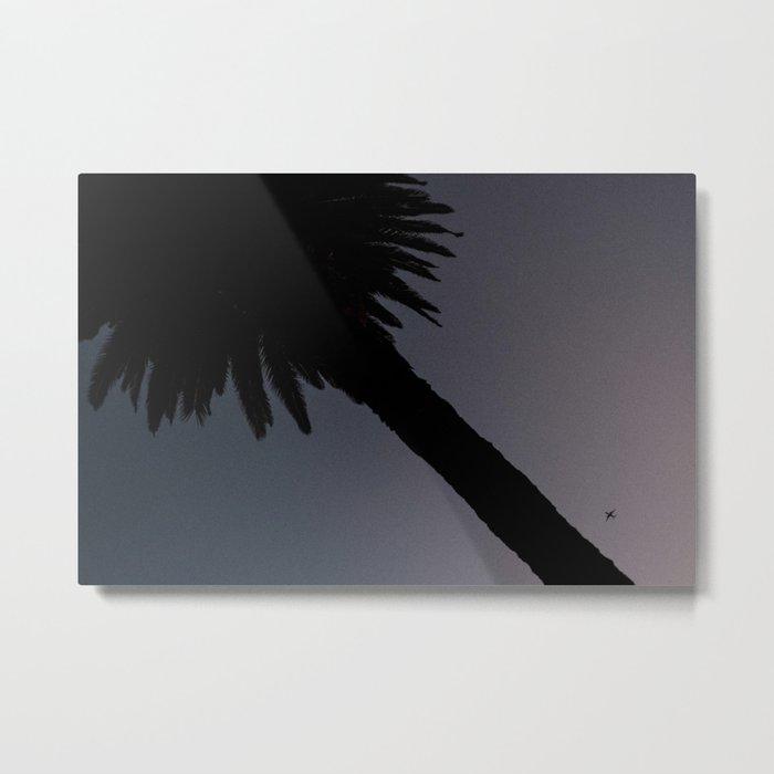 Palm and Plane Metal Print