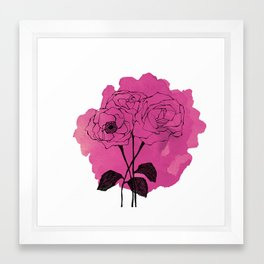 spray roses Framed Art Print