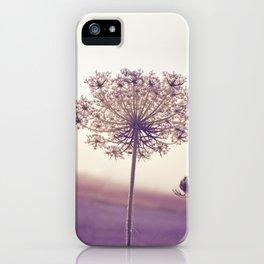 Queen Anne's Heir iPhone Case