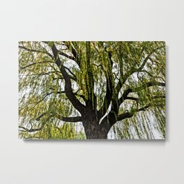 spring hopes muted Metal Print