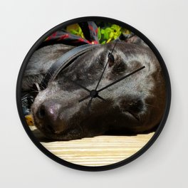 Lazy Lurcher Wall Clock