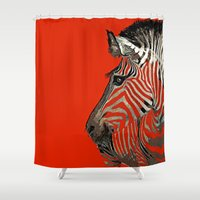 zebra Shower Curtains featuring Zebra  by Saundra Myles