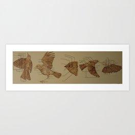 "A Studium Avis ""Bird Study"" Art Print"
