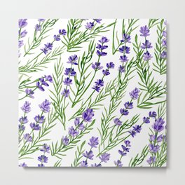 Watercolour hand drawn branches of lavender on a white background. Metal Print