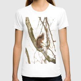 Little Friend On The Branch  T-shirt