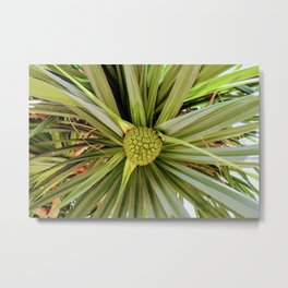 Tropic Tree Metal Print