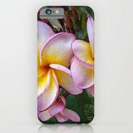 Blushing Hawaiian Plumeria Blossom iPhone Case