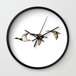 Flying Mallards Wall Clock