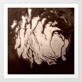 Nasa Picture 16: Mars south polar Art Print