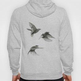 Starlings Hoody