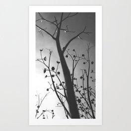Pixies Twilight Whimsy Art Print