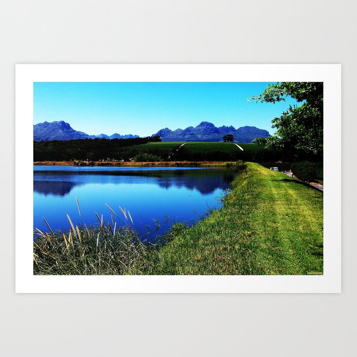 """The Vineyards of Stellenbosch"" Art Print"