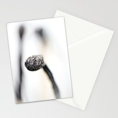 Who is fooling who?.... Stationery Cards