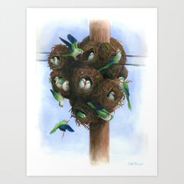 Urban Monk Parrot Nest Art Print