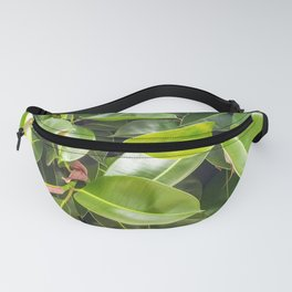 The rubber fig Fanny Pack