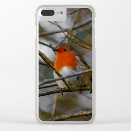 Robin in a tree Clear iPhone Case